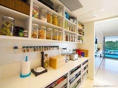 a walk in pantry with a view.