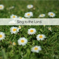 PSALM 96 Sing a new song to theLord!Let the whole earth sing to theLord!Sing to theLord; praise His name.Each day proclaim the good news that He saves.