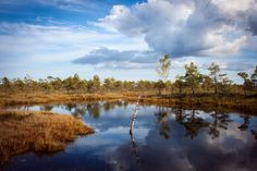 #autumn #clouds #fall #landscape #nature #pond #reflection #scenic #water