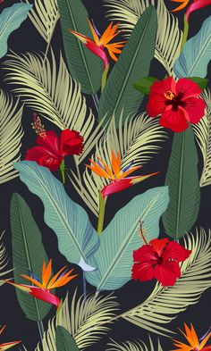 Seamless Pattern Tropical Leaves With Red Hibiscus Flower And Bird Of Paradise Plant Wallpaper, Tropical Wallpaper, Flower Phone Wallpaper, Iphone Wallpaper, Galaxy Wallpaper, Tropical Art, Tropical Leaves, Tropical Style, Beautiful Flower Drawings