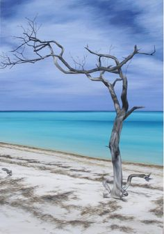 Isla Holbox Island