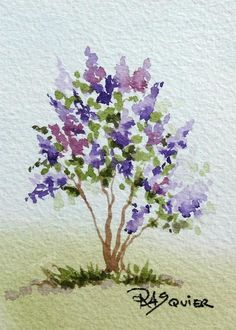 Lilacs - May 3, 2010 The Scent of French Lilacs - May 4, 2010 by Artist Rita Squier Original Watercolor Paintings Size: 2.5 x 3.5 inches ...