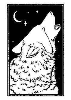 Coloriage Loup Dans La Foret.82 Meilleures Images Du Tableau Dessins De Loups A Colorier