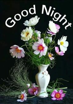 Pin On Good Night
