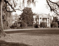 This is a very grand and stately mansion located in Adams County, Mississippi. I like the huge columns, porch, and balcony. Old Pictures, Old Photos, Natchez Trace, Plantation Homes, Beautiful Sites, Down South, Atlantic City, Faded Glory, Mississippi