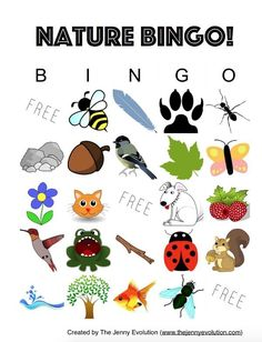 Nature Bingo Kids Activity + FREE Printable: A fun outdoors activity for kids! on The Jenny Evolution Bingo For Kids, Free Activities For Kids, Nature Activities, Sensory Activities, Summer Activities, Crafts For Kids, Baby Sensory, Indoor Activities, Reading Activities