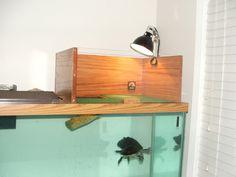 turtle tank basking platform