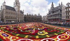 Grand Place in Bruxelles with flower carpet