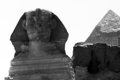 The Great Sphinx of Giza, commonly referred to as the Sphinx, is a limestone statue of a reclining or couchant sphinx (a mythical creature with a lion's body and a human head) that stands on the Giza Plateau on the west bank of the Nile in Giza, Egypt.  Author: Henry Oliver Photography