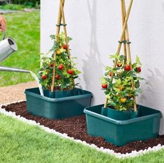 Self Watering Pots, Garden Animals, Grow Bags, Tomato Plants, Growing Tomatoes, Garden Ornaments, Plant Hanger, Beautiful Gardens, Garden Plants