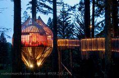 Treehouse - Thiết kế nhà cây độc đáo 11