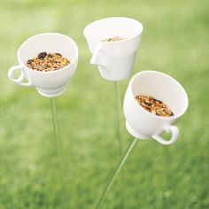 Teacup Bird Drinker Or Feeder from notonthehighstreet.com