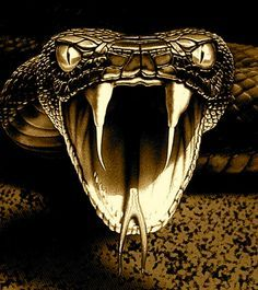 Image result for snake face mouth open