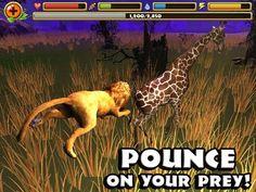 RSafari simulator: Lion Hack