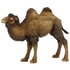camello de bactriane Camel, Animals, Animals Of The Rainforest, Educational Toys, Wood Toys, Animales, Animaux, Camels, Animal