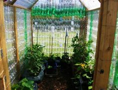 How to Recycle Plastic Bottles for Outdoor Home Decorating and Garden Design - Upcycled Home Decor Plastic Bottle Greenhouse, Reuse Plastic Bottles, Plastic Bottle Tops, Recycled Bottles, Plastic Recycling, Plastic Containers, Cheap Greenhouse, Greenhouse Interiors, Backyard Greenhouse