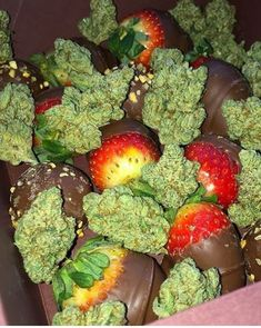 I wish upon my luckiest star in the galaxy that I can spend a day with you V., and share three of my absolute favorite things on this earth. Chocolate, strawberries and cannabis! Ganja, Rauch Fotografie, Cannabis News, Stoner Art, Weed Art, Puff And Pass, Stoner Girl, Smoke Weed, Stoner Humor