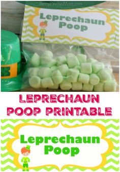 St. Patrick's Day Party Idea | St. Patrick's Day Treat | Kid Party Idea | Goody Bag Idea | DIY | St. Patrick's Day Printable