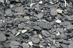 rocks of newfoundland - Google Search Newfoundland, Rocks, Google Search, Newfoundland Dogs, Stones