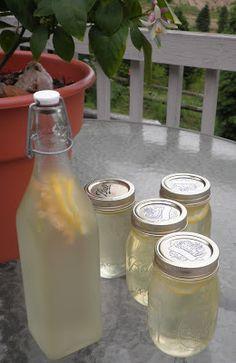 The Essential Herbal Blog: Elderflower Champagne
