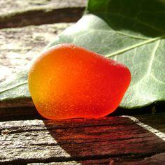 Genuine Beach Sea Glass  Rare Amberina  Red  by SeaGlassSister, $40.00