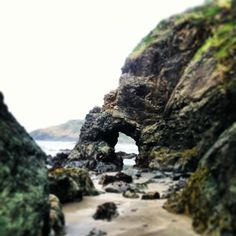 Trinidad, California - You can go thru the hole in the rock formation to get to a hidden beach, but beware of high tide or you will be stuck! Lots of cool little tide pools here!