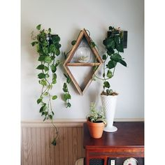 Simple and sweet, the reclaimed wood Diamond Shelf is a unique way to bring a rustic touch into any home. Use it to display dried flowers or small succulents. Corner Plant Shelf, Indoor Plant Shelves, Small Wall Shelf, Plant Wall, Plant Decor, Succulent Display, Wood Shelves, Floating Shelves, Small Succulents