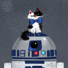 The most loveable R2D2 adopted the sweetest and fluffiest cowcat kitler.