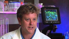 """""""Por primera vez en la historia de la medicina, las #CélulasMadre nos han dado una vía para reparar el #cerebro"""" https://www.youtube.com/watch?v=IVmXTblUm-c"""