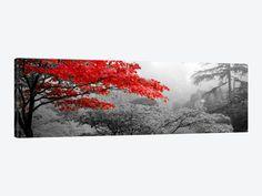 Brayden Studio Leinwandbild Bäume in einem Garten Butchart Gardens Victoria Vancouver Island