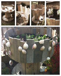 Planter made from cable spool. Cable spool - free. Palate cut up for sides - free. Shells - free. Only cost was potting soil and plants :-)