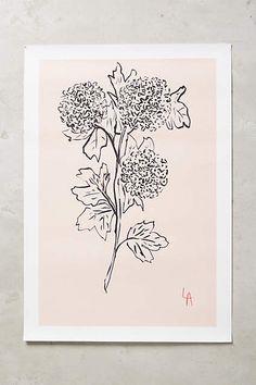 Floral Silhouette Print - anthropologie.com