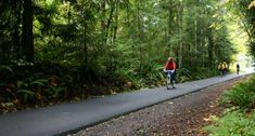Banks-Vernonia State Trail - Vernonia, Oregon (Multi-Use Trail:  Walker, Jogger, Biker or Mounted Rider)