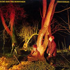 Echo And The Bunnymen* - Crocodiles (Vinyl, LP, Album) at Discogs