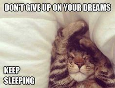Don't give up on your dreams... Keep sleeping~