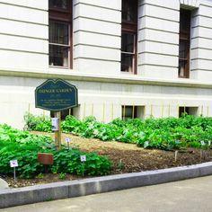 The Pa, Food Bank, Pennsylvania, Banks, Gardens, Usa, Outdoor Decor, Nature, Garden
