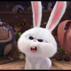 New Easter Bunny 2019 Lovely Luster Charlie Bears Bunya