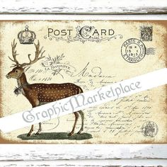 Postcard Deer Stag Large Image Instant by GraphicMarketplace