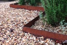 Metal edging ideas are one of the easiest ways to have landscape edging and install it easily. Metal landscape edging is widely used to define Metal Landscape Edging, Metal Garden Edging, Garden Border Edging, Steel Edging, Yard Edging, Landscape Borders, Lawn And Landscape, Garden Borders, Landscape Design