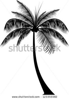 Realistic Palm Tree Silhouette - stock vector