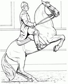 Amazing Horse Jumping Coloring Pages 49 Coloring Pages Horse Jumping