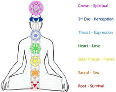 The 7 main chakras or energy centres in the body.