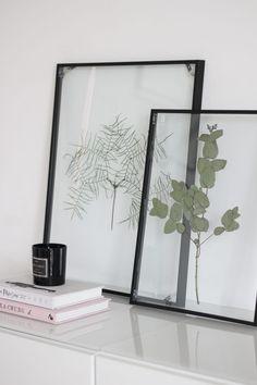 DIY: Floating Frame Herbarium - this is how you create the floating frame!- DIY: Floating Frame Herbarium – so bastelt ihr den schwebenden Rahmen! With this Floating Frame Herbarium you give your … -