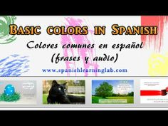 Describing Things with Colors in Spanish - Los Colores en Español