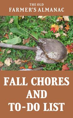 Check here for a fall garden cleanup to-do list of fall chores in order to clean up your vegetable garden Find out all about fall garden tips from The Old Farmer's Almanac. Modern Farmer, Old Farmers Almanac, Garden Planner, Garden Journal, Garden Maintenance, Living Off The Land, Autumn Garden, Gardening Tips, Container Gardening