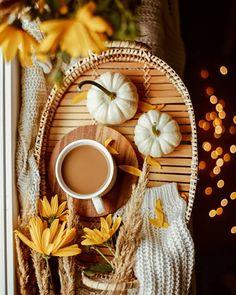 """Daria Pinczyńska on Instagram: """"Autumn is coming 🍁 Flat lay Coffee, Beverage & Food photography. White pumpkins, yellow flowers, cup with tray. Bokeh. Po ciężkiej nocy i kiepskim początku dnia czas na kawę ☕ Chociaż powinna to być herbata z miodem…"""""""