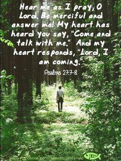 Psalms 27:7-8❤