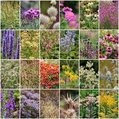 """PIET OUDOLFS """"MILLENNIUM GARDEN"""" - Millennium Garden, Pensthorpe Norfolk"""
