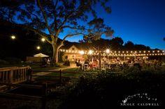 rustic whimsical wedding temecula creek inn temecula-creek-inn-wedding-photo-by-nicole-caldwell-74
