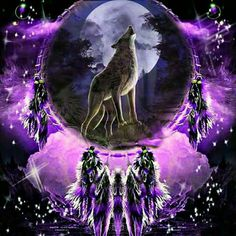 Dreamcatcher with Wolf Wolf Photos, Wolf Pictures, Dream Catcher Native American, Native American Art, Beautiful Wolves, Animals Beautiful, Wolf Background, Wolf Dreamcatcher, Indian Wolf
